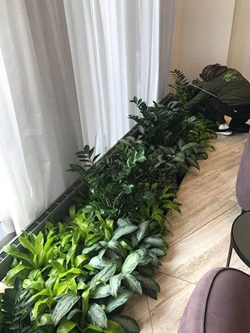 staff working on plants
